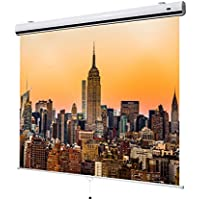 "celexon 117"" Manual Pull Down Projector Screen Manual Expert Series 