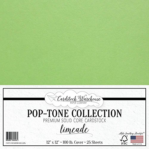 Limeade Green Cardstock Paper - 12 x 12 inch 100 lb. Heavyweight Cover - 25 Sheets from Cardstock Warehouse ()