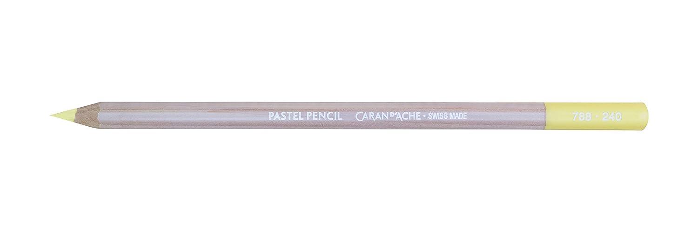788.046 Cassel Earth Caran Dache Pastel Pencils