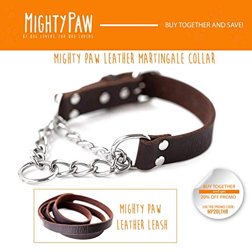 Mighty Paw Leather Training Collar, Martingale Collar, Stainless Steel Chain - Premium Quality Limited Chain Cinch Collar. (Large, Brown)