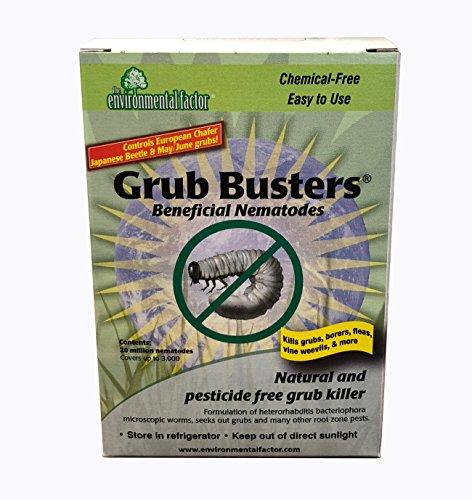 10 Million Beneficial Nematodes (H.bacteriophora) - Nema Globe Grub Buster for Pest Control - New