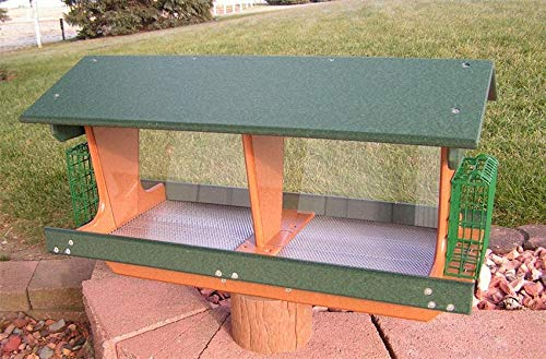 - DutchCrafters Amish Poly Double Bird Feeder with Two Suet Holders, Rain Drain Holes, Cardinal, Finch, Bluebird, Large Bird Feeder Made in America (Turf Green & Bright Orange)