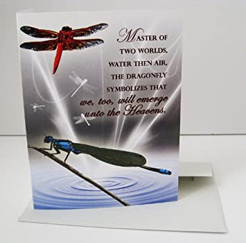 Amazon dragonfly unique blank greeting card health personal dragonfly unique blank greeting card m4hsunfo