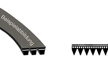 Passt Hoover Candy Wäschetrockner Antriebsriemen 1930h7 40001012
