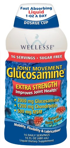 Wellesse Joint Movement Glucosamine with Chondroitin + MSM, Natural Berry Flavor, 16-Ounce (480 ml) (Pack of 2) ()
