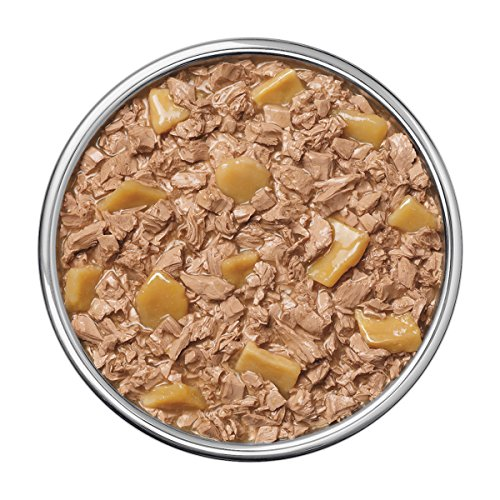 Purina Pro Plan Wet Dog Food, Savor, Savory Meals, Salmon – Reviews & Compare Deals – Pet ...