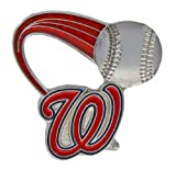 MLB Washington Nationals Glitter Trail Pin