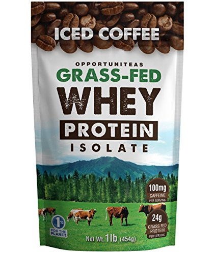 High Protein Coffee Powder - Healthy Grass Fed Whey Isolate + Delicious Flavor of Swiss Coffee - All Natural Low Carb Pre / Post Workout Drink Mix Shake - No Sugar, Sweetener, Soy, GMO or Gluten. 1 lb