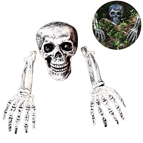 Fullyy Halloween Scary Skull Skeleton Realistic Looking Skeleton