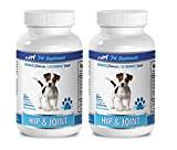 Pet Supplements Hip Care for Dogs - Hip and Joint Support - for Dogs - Chewable - glucosamine chondroitin for Dogs Soft Chews - 2 Bottle (240 Chewable Tablets)