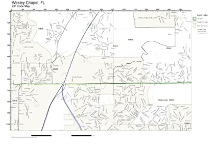 Amazoncom Zip Code Wall Map Of Wesley Chapel Fl Zip Code Map Not