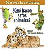 ¿Qué Hacen Estos Animales?, Bobbie Kalman, 0778787028