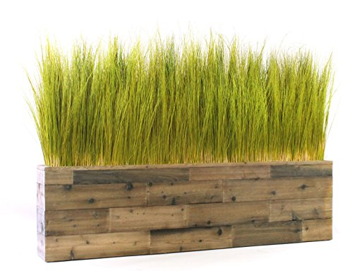 Dalmarko Designs td109 Preserved Spiral Grass in Reclaimed Wooden Planter - Preserved Grass