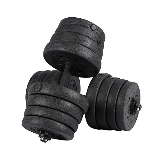 30kg 66LB Dumbbell Set Gym Free Weights Biceps Gym Workout Training Fitness