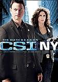 CSI: New York: Season 6 (Bilingual)