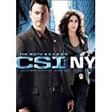 CSI: New York: Season 6
