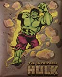 The Incredible Hulk 16x20 Marvel Comic Poster 1987