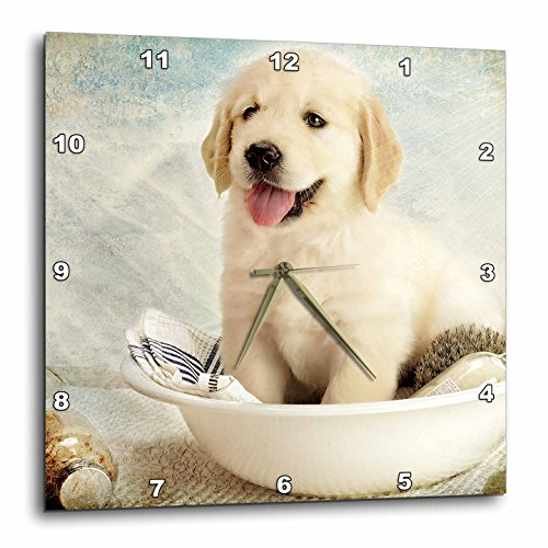 3dRose DPP_172989_3 Cute Golden Retriever Puppy Spa Day Art Photo Courtesy Badestboss. Wall Clock, 15 by 15-Inch