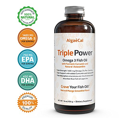 AlgaeCal Mango Flavored Triple Strength Omega 3 Fish Oil Supplement - 16 fl oz - Muscle Farm Fish Oil