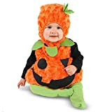 Zhangjiagang Leadtex Clothing Co - L Plush Belly Pumpkin Infant Costume 18-24M