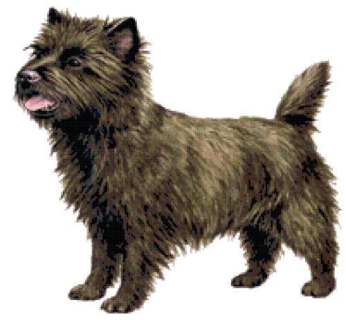 - Cairn Terrier Dog Counted Cross Stitch Pattern