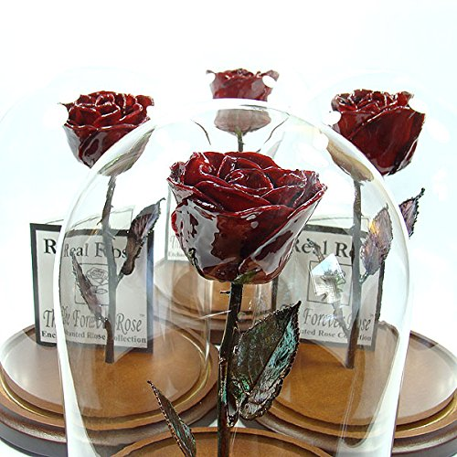 Enchanted Rose - The Beauty and the Beast inspired Forever Rose - This is a Real Rose! (Burgundy) by The Forever Rose