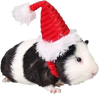 Amazon.com: ANIAC - Gorro de Papá Noel para conejo, hámster ...