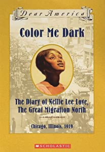 Color Me Dark: The Diary of Nellie Lee... book by Patricia C. McKissack