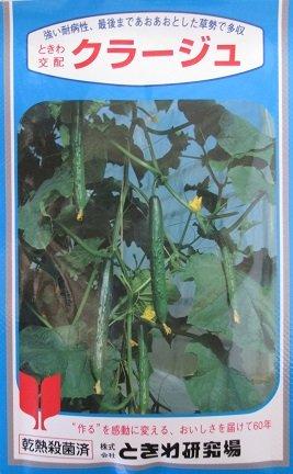 ときわ交配 クラージュ ときわ研究場のキュウリ品種です。 B01JRF4JA0