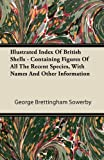 Illustrated Index of British Shells - Containing Figures of All the Recent Species, with Names and Other Information, George Brettingham Sowerby, 1446066045