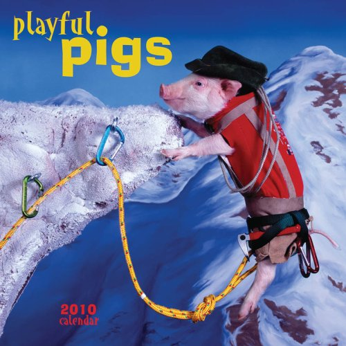 Playful Pigs 2010 Calendar