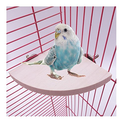 Round Perch - Comidox 17cm17cm Wooden Parrot Bird Cage Perches Round Coin Stand Platform Budgie Toys Bird Stand for Parakeets 1PCS