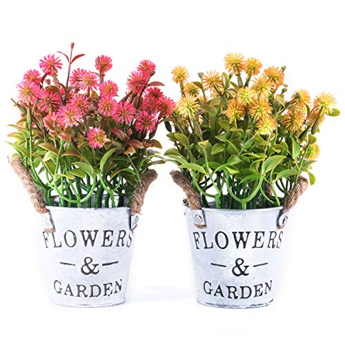 The Bloom Times Artificial Flowers Potted Small Fake Plants Plastic Floral Arrangements in Metal Pot for Home Farmhouse Office Table Top Centerpieces Counter Spring Decor Set of 2