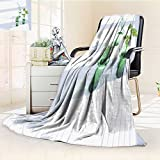 YOYI-HOME Duplex Printed Blanket 300 GSM Anti-Static Super Soft There are Three Green Glass Bottles Under The Window to Plant The Plants Bed Blanket Couch Blanket/59 W by 79'' H