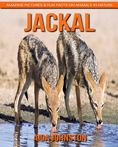 Download Jackal: Amazing Pictures & Fun Facts on Animals in Nature ebook