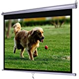 Dansung Projector Screen Manual Pull Down 100 100 inch 4:3 HD Movie Mountable HD Projection Screens for Indoor Home Theater Business Office