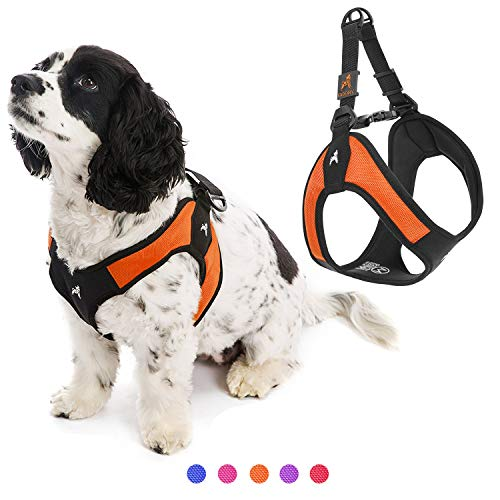 Gooby Dog Harness - Orange, X-Small - Escape Free Easy Fit Patented Step-in Small Dog Harness - Perfect on The Go - No Pull Harness for Small Dogs or Cat Harness for Indoor and Outdoor Use