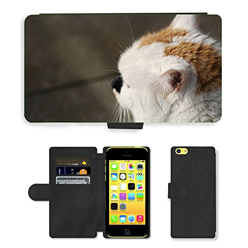 Just Phone Cases PU Leather Flip Custodia Protettiva Case Cover per // M00129170 Cat View Close national Cat Head // Apple iPhone 5C