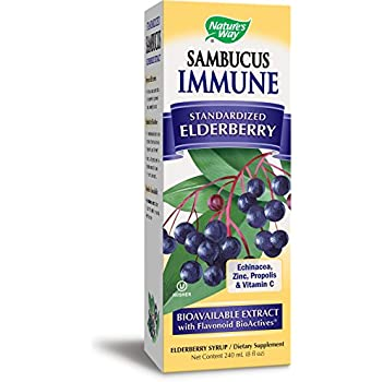 Nature S Way Sambucus For Kids Bioavailable Elderberry