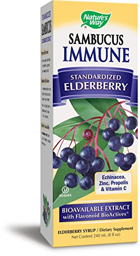 Echinacea Elderberry Herbal Syrup (Nature's Way Sambucus Elderberry  Immune Syrup, 8 Ounce)