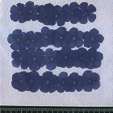フロックス押し花パック 押し花素材材料 【フロックス】濃いブルー24輪入り