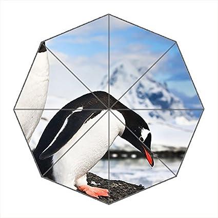 Viaje umbralla-windproof compacto paraguas plegable portátil con marco reforzado, 8 varillas &
