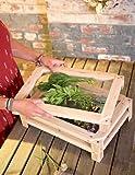 Arts & Crafts : Stacking Herb Drying Racks, Set of 3