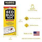 Harris Bed Bug Early Detection Glue Traps