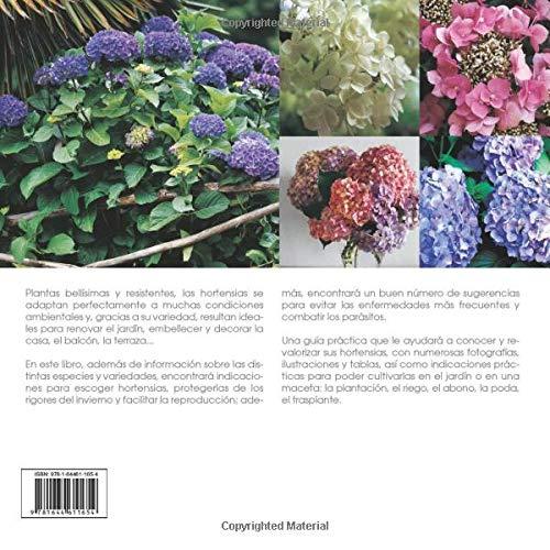 hortensias enfermedades Las Hortensias Spanish Edition Edward Bent Aldo Colombo