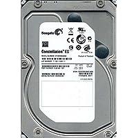 Seagate ST32000644NS P/N: 9JW168-501 F/W: SN11 2TB KRATSG