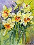 Caroline's Treasures BMBO0880GF Daffodils by Maureen Bonfield Garden Flag, Small, Multicolor For Sale