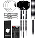 PEGASUS TUNGSTEN STEEL DARTS SET - 21g, 22g, 24g, 26g, 28g, 30g - Black Red Dragon Shafts, Black Winmau Flights, Wallet & Red Dragon Checkout Card
