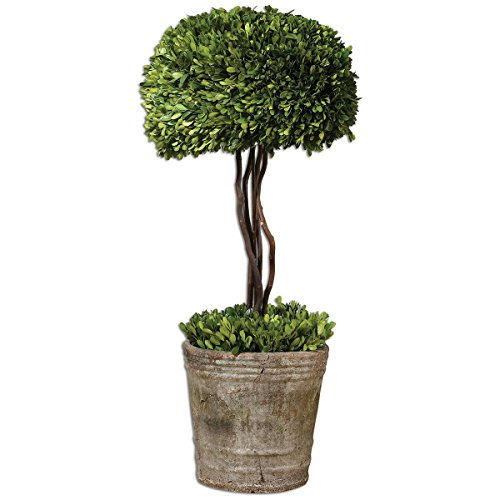 - Uttermost Preserved Boxwood Tree Topiary 14 x 14 x 33