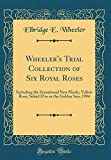 Amazon / Forgotten Books: Wheeler s Trial Collection of Six Royal Roses Including the Sensational New Hardy, Yellow Rose, Soleid d Or or the Golden Sun, 1904 Classic Reprint (Elbridge E Wheeler)